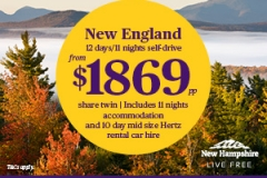 MARK-2035 New England USA Digital Campaign NEW HAMPSHIRE AOD 300x250