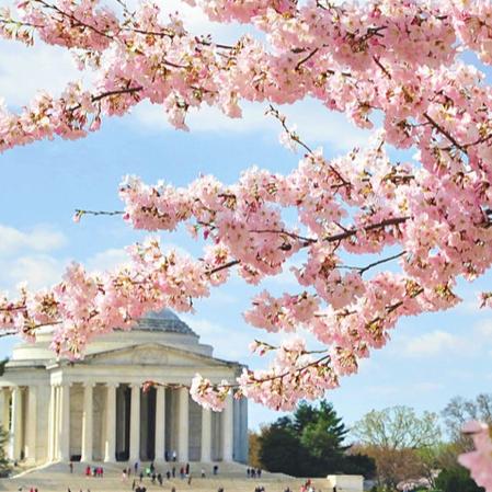 April 28th 2020 – Destination DC – Destination DC Launches Global Travel Agent Training Program